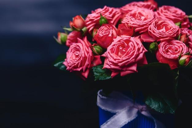 Różany krzak w koszu barbados rozmaitość na ciemnym tle