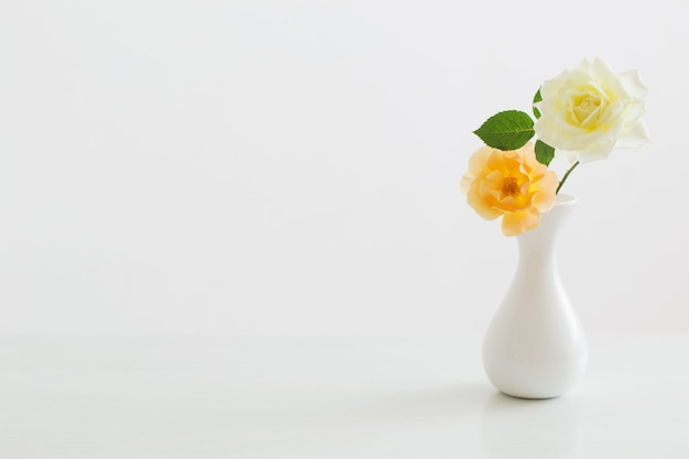 Róże w białym wazonie na białym tle