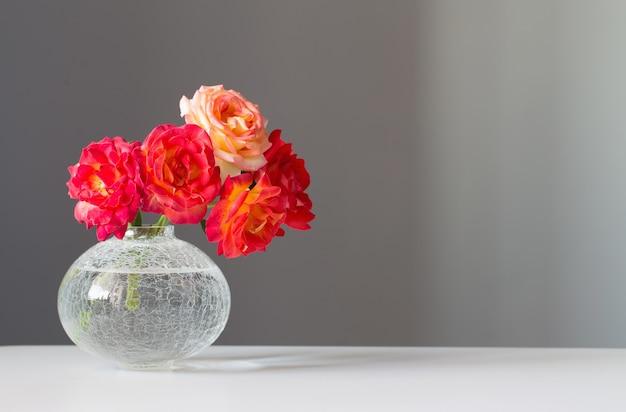 Róże w szklanym wazonie na szarym tle