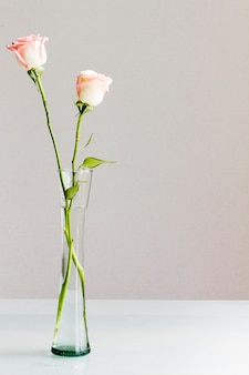 Róże w szklanym wazonie
