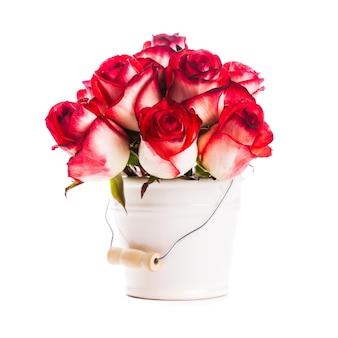 Róże w wiadrze na białym tle