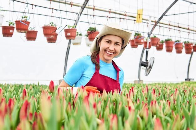 Roześmiana młoda kobieta ogrodniczka w szklarni z dojrzewającymi tulipanami