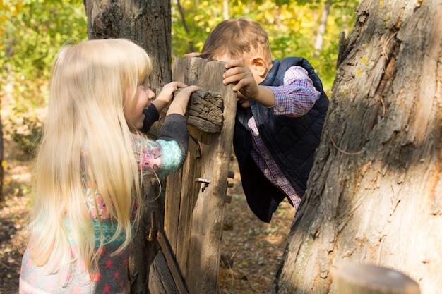 Roześmiany mały chłopiec i dziewczynka bawiący się starą rustykalną drewnianą bramą przymocowaną do pnia drzewa, popychając się nawzajem z przeciwnych stron