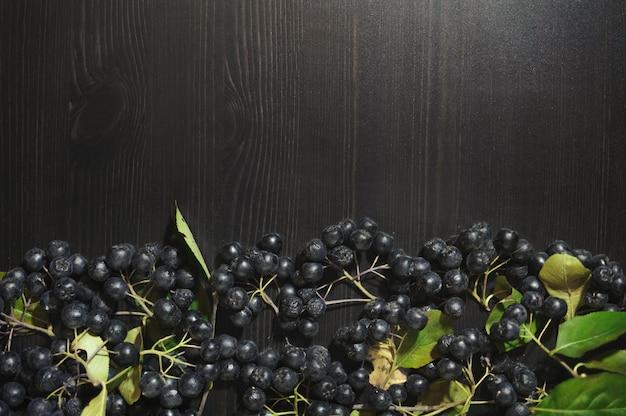 Rozgałęzia się czarne aroni jagody na zmroku stołu tle (aronia melanocarpa)