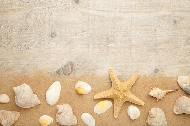 Rozgwiazda i seashells z piaskiem na lekkim tle. koncepcja lato