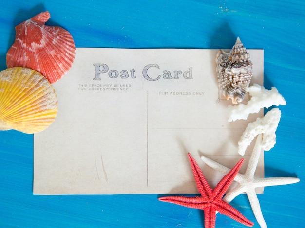Rozgwiazda, korale i seashells na błękitnym drewnianej ściany odgórnym widoku z papierowej kopii przestrzenią
