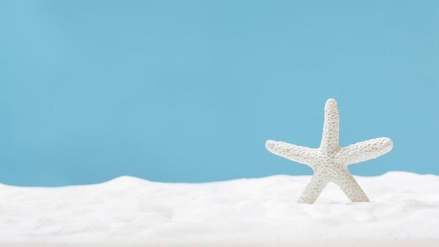 Rozgwiazda na białym piasku. pojęcie lata
