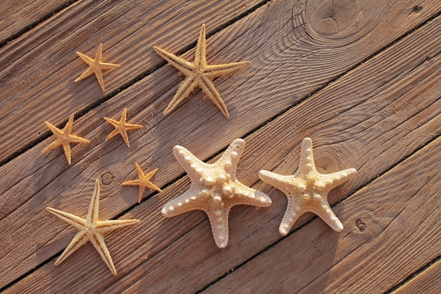 Rozgwiazda na drewnianym molo wylana na drewniany pokład