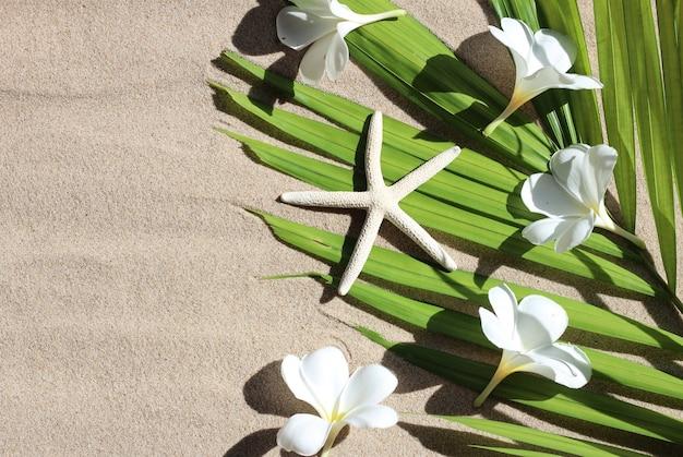 Rozgwiazda z kwiatami plumerii na liściach tropikalnych palm na piasku. letnia koncepcja tła