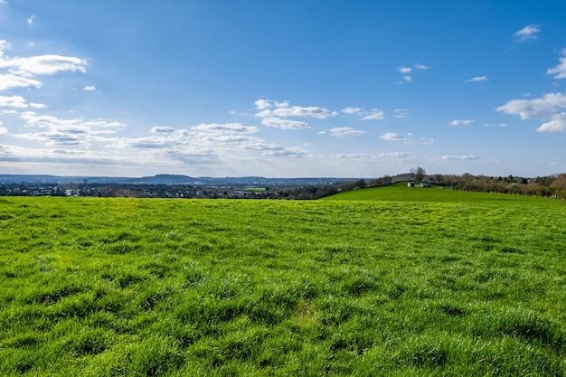 Rozległa zielona dolina z błękitnym niebem w ciągu dnia