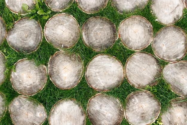Rozlewa drzewa na trawy tle