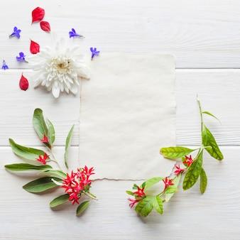 Rozmieszczone kwitnące gałęzie i papier