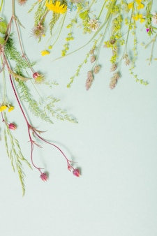 Różne dzikie kwiaty na powierzchni papieru
