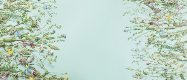Różne dzikie kwiaty na zielonej powierzchni