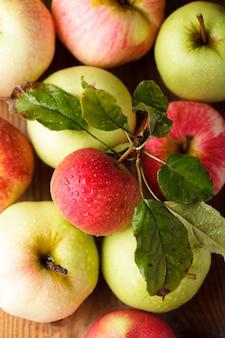 Różne jabłka na drewnianym stole w ogrodzie