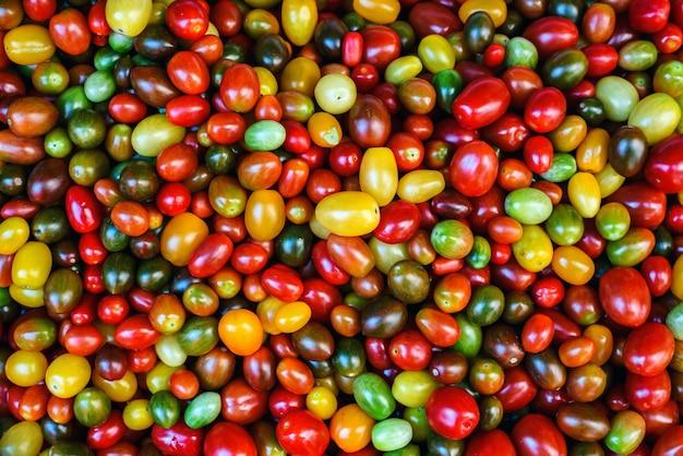 Różne kolorowe tło pomidorów koktajlowych