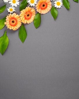 Różne kwiaty ułożone ukośnie