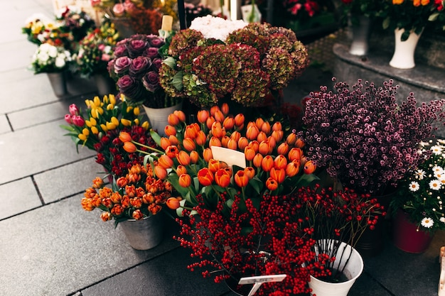 Różne kwiaty w oknie wystawowym sklepu z pustymi metkami z cenami.