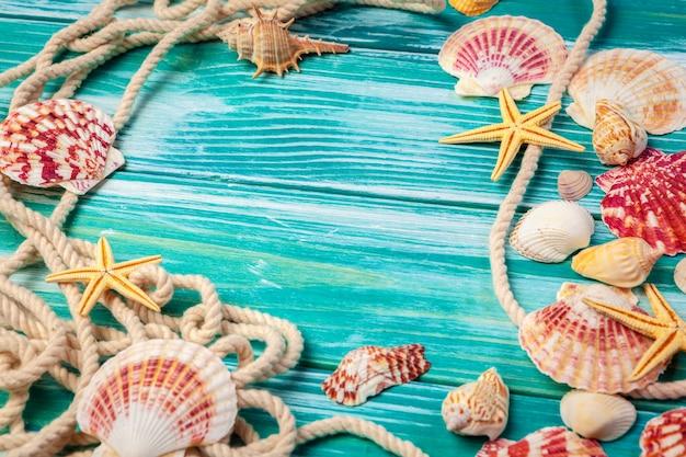 Różne morze skorupy na koloru drewnianym tle