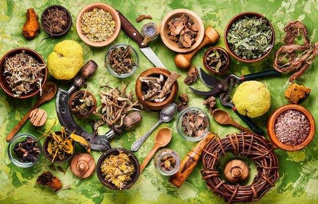 Różne naturalne zioła medyczne