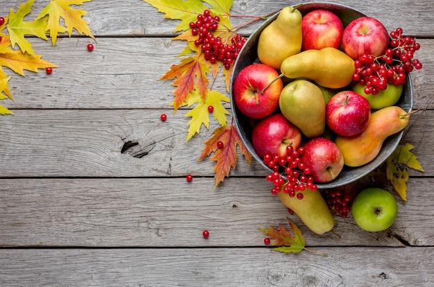 Różne owoce, jarzębina, jabłka, gruszki w starej metalowej misce i opadające liście na wyblakłym rustykalnym drewnie, widok z góry