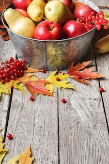 Różne owoce, jarzębina, jabłka, gruszki w starej metalowej misce i opadające liście na zwietrzałym rustykalnym drewnie
