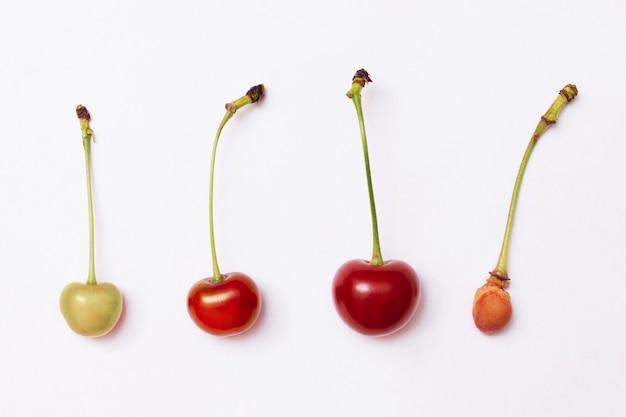 Różne pod względem dojrzałości wiśni i kamienia wiśniowego na białym. koło życia. szybkość życia. sezonowe zmiany w przyrodzie
