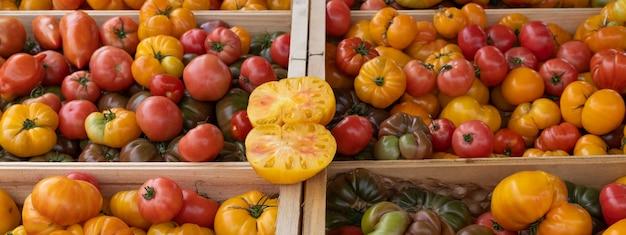 Różne pomidory na rynku francuskim