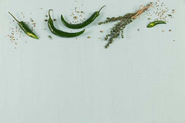 Różne przyprawy i zioła na jasnozielonym tłem. przyprawy tło