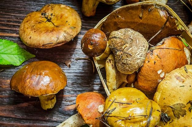 Różne rodzaje tylko zebranych grzybów na stole