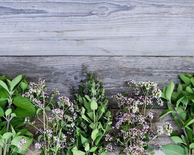 Różne rośliny na szarym tle drewnianych desek z miejscem na kopię