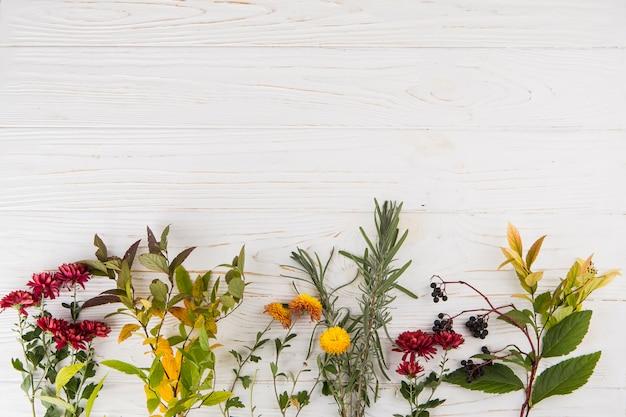 Różne rośliny rozgałęziają się z kwiatami na stole