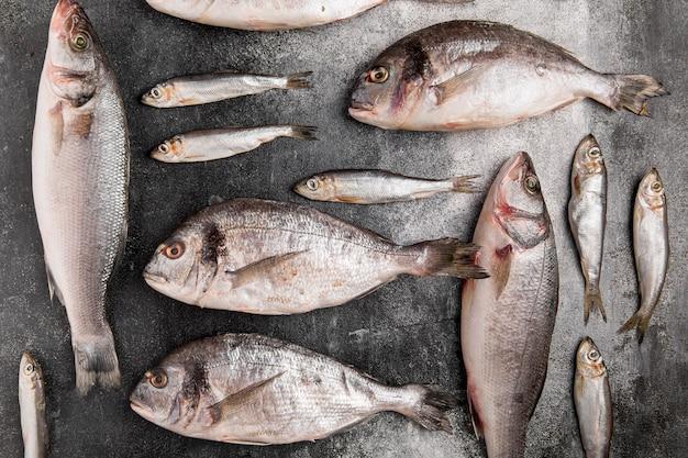 Różne srebrne ryby z owoców morza