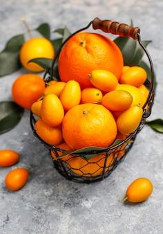 Różne świeże owoce cytrusowe w koszyku do przechowywania żywności, cytryny, pomarańcze, mandarynki, kumkwaty, widok z góry