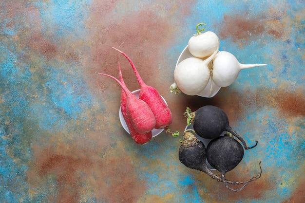 Różne świeże rzodkiewki, rzodkiew biała, długa różowa i czarna.