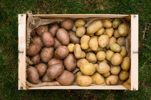 Różne ziemniaki w drewnianym pudełku
