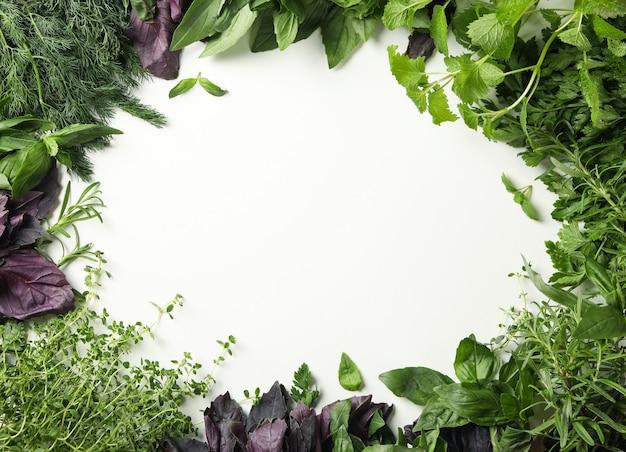 Różne zioła na białym tle