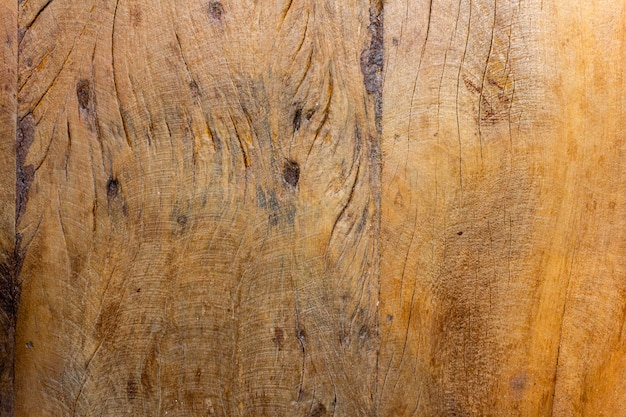 Różnorodna struktura drewna.
