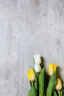 Różnorodność kwiatów tulipanów