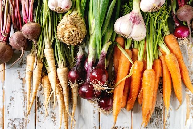 Różnorodność warzyw korzeniowych