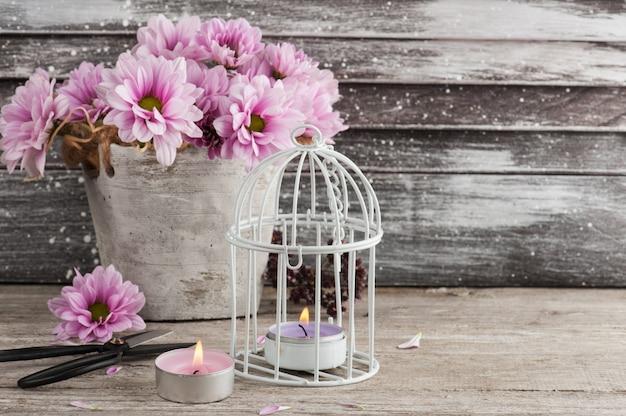 Różowa chryzantema w betonowym garnku z nożycami