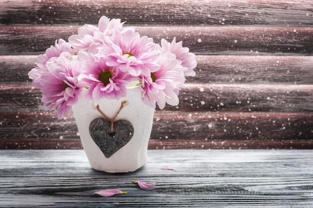 Różowa chryzantema w betonowym garnku