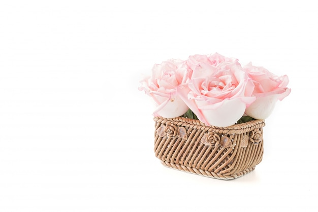 Różowa i biała róża