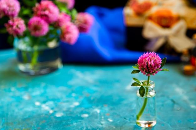 Różowa koniczyna kwitnie na stole z błękitnym tłem