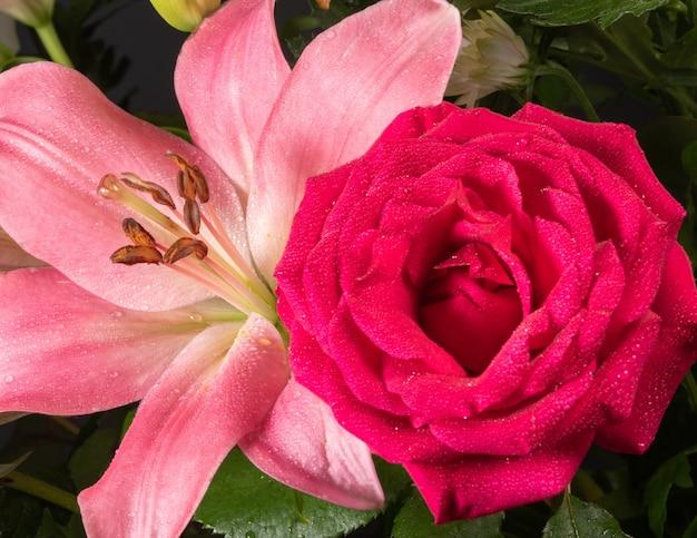 Różowa lilia i czerwona róża w stylu makro strzał w ogrodzie.