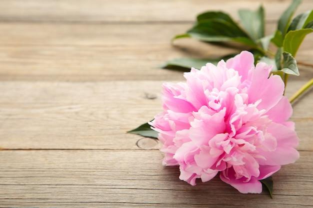Różowa peonia kwitnie na szarym drewnie.