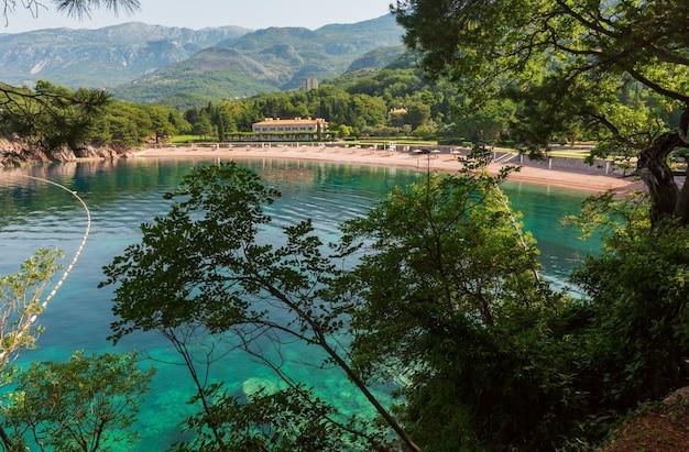 Różowa piaszczysta plaża milocher przez gałęzie drzew (czarnogóra, budva)