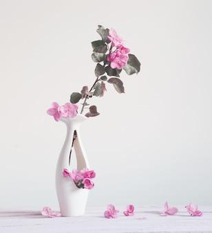 Różowa wiosna kwitnie w wazie na białym tle