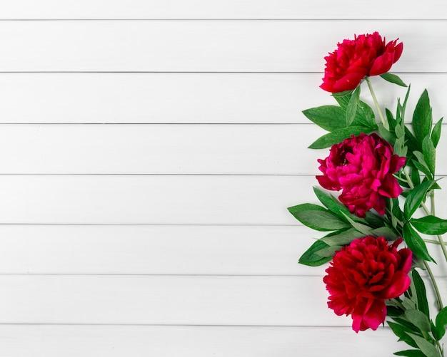 Różowe czerwone kwiaty piwonii marsala na białym rustykalnym drewnianym stole z widokiem z góry miejsca na kopię i płaskim układaniem.