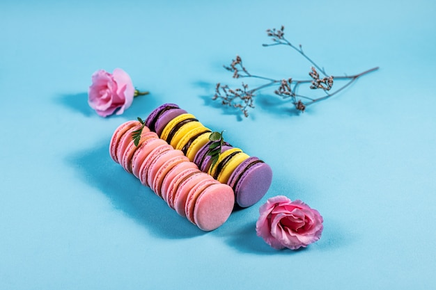 Różowe fioletowe i żółte makaroniki na niebieskim tle